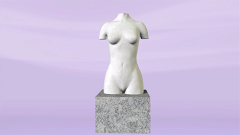Wellspect Lofric Scultpure female torso